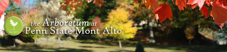 Autumn in the Mont Alto Arboretum with logo