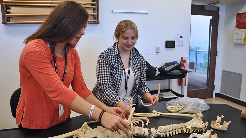 Two female high school students examine a skeleton on a table