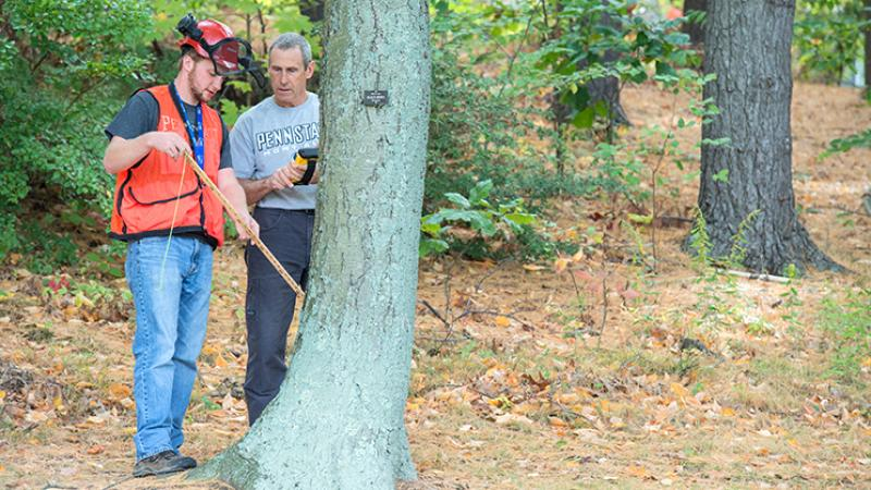 Forestry Student and Instructor Measure Tree