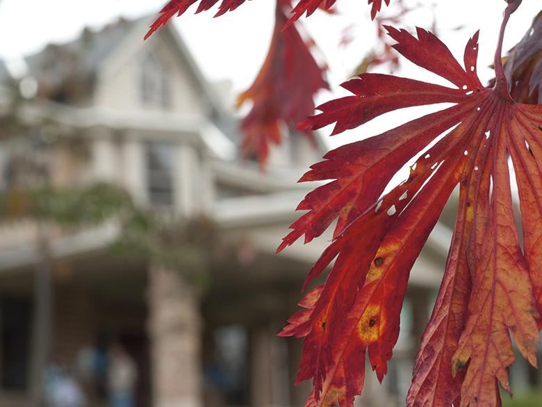 One of Penn State Mont Alto's buildings viewed through fall foliage