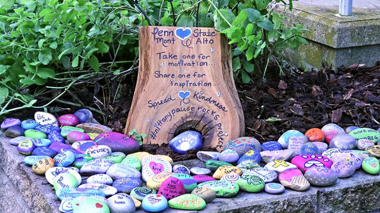 Nittany Pause Rocks available at the Occupational Therapy House for the taking